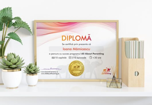 Preview diploma